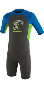 2020 O'Neill Toddler Reactor 2mm Back Zip Shorty Wetsuit 4867 - Graphite / Dayglo / Ocean