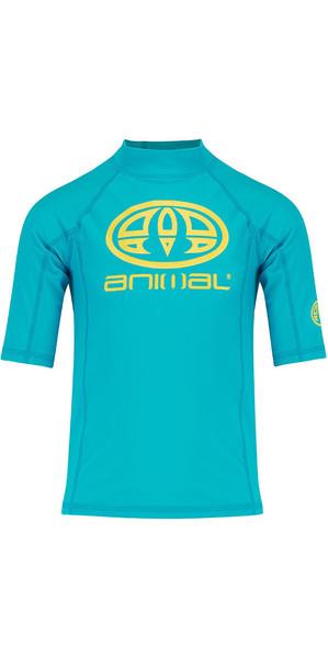 2018 Animal Junior Boys Hiltern Short Sleeve Rash Vest Bluebird Blue CL8SN610