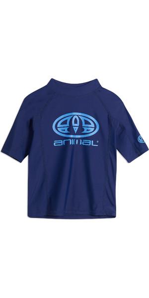 2019 Animal Junior Boys Hiltern Short Sleeve Rash Vest Nautical Blue CL9SQ610