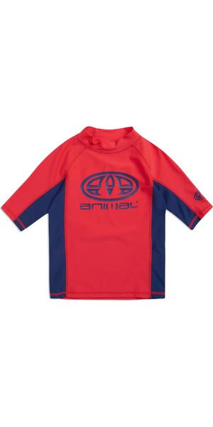 2019 Animal Junior Boys Hiltern Short Sleeve Rash Vest Tomato Red CL9SQ610