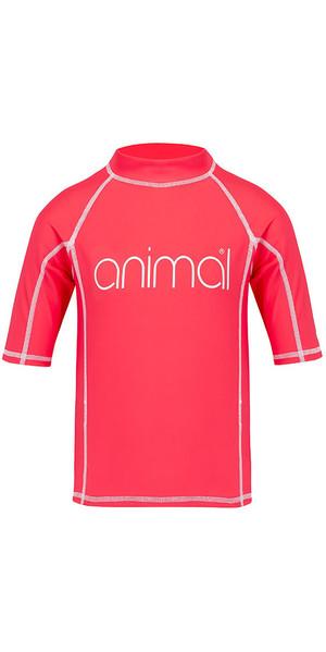 2018 Animal Junior Girls Molli Short Sleeve Rash Vest Petunia Pink CL8SN815