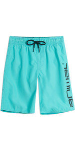 2019 Animal Junior Tanner Board Shorts Pacific Blue CL9SQ600