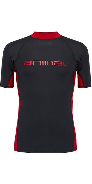 2018 Animal Luli Short Sleeve Rash Vest Black CL8SN021