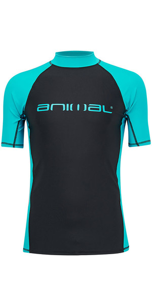 2018 Animal Luli Short Sleeve Rash Vest Bluebird Blue CL8SN021