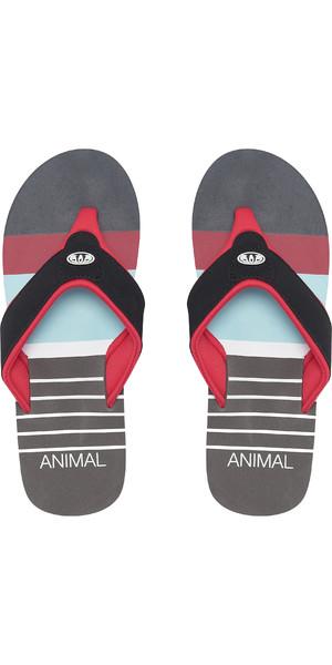 2019 Animal Mens Jekyl Swim Flip Flops Red FM9SQ010