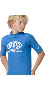 2020 Animal Junior Boys Hiltern Short Sleeved Rash Vest CL0SS610 - Blue