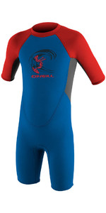 2020 O'Neill Toddler Reactor 2mm Back Zip Shorty Wetsuit OCEAN / GRAPHITE / RED 4867